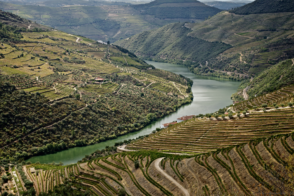 The Douro Valley.