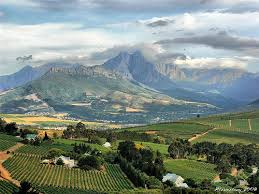 Stellenbosch - keep it real, please.