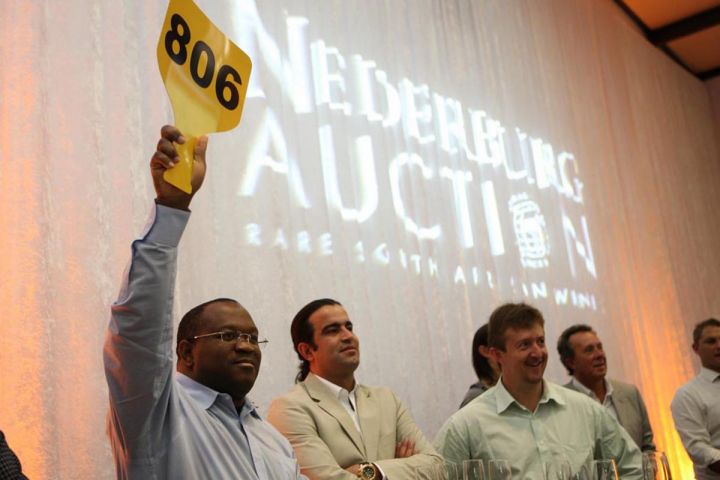 nederburg-wine-auction-1371650197