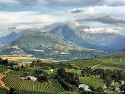 Stellenbosch - keep it real, please.